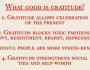 Variety Friday (Robert Emmons: What Good IsGratitude?)
